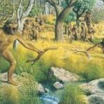 australopithecan